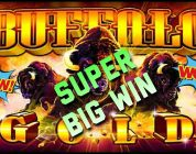Buffalo Gold — $$uper Big Win$
