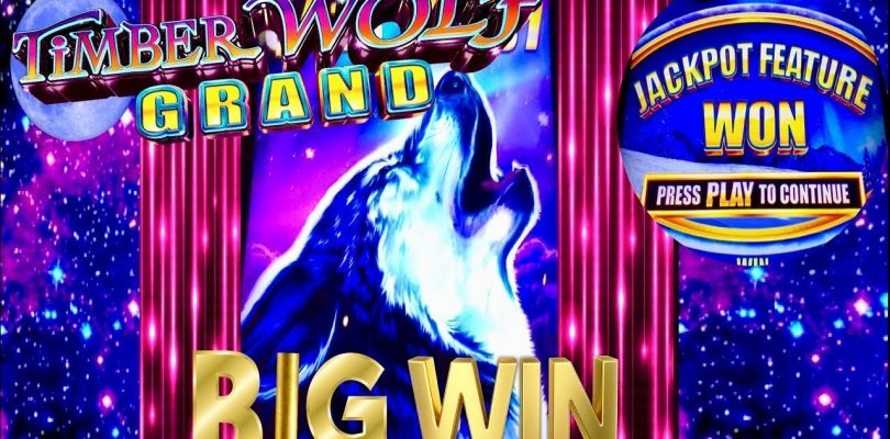 ★NEW SLOT! TIMBER WOLF GRAND★BIG WIN SLOT MACHINE★ LAS VEGAS SLOTS!