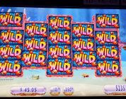 Gold fish 3 slot machine BIG WIN max bet.