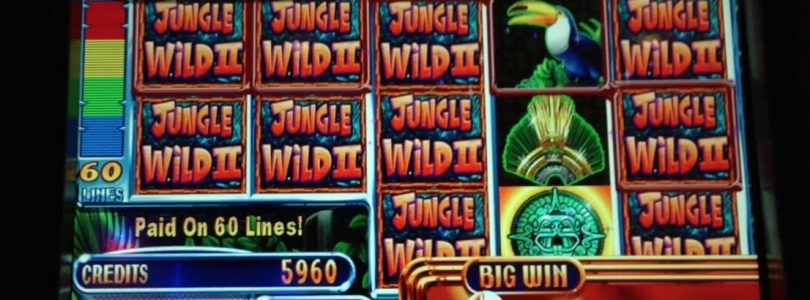 Jungle Wild II — WMS — BIG WIN! Money Burst Slot Machine Bonus