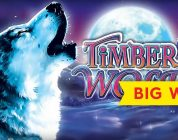 Timber Wolf Deluxe Slot — BIG WIN BONUS!