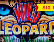 Wild Leopard Slot — RETRIGGER, BIG WIN SESSION — $10 Bet!