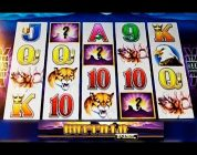 MAX BET! BIG WIN! — Buffalo Legends Slot Machine Bonus — Aristocrat
