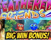 BIG WIN-NEW GAME-FEATHERED FRIENDS