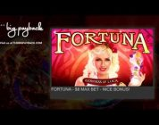 Fortuna Slot. BIG WIN BONUS Max Bet. ссылки под видео.