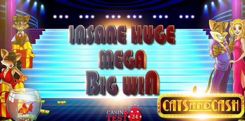 MUST SEE!!! INSANE HUGE MEGA BIG WIN ON CATS AND CASH SLOT (PLAY'N GO) — 5€ BET!