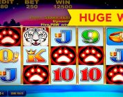 White Tiger Slot — 5 SYMBOL TRIGGER — BIG WIN BONUS!