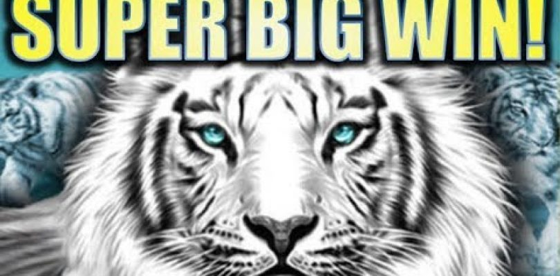 ★SUPER BIG WIN!!★ SIBERIAN STORM! (IGT) WILDS! WILDS! WILDS! Slot Machine Bonus