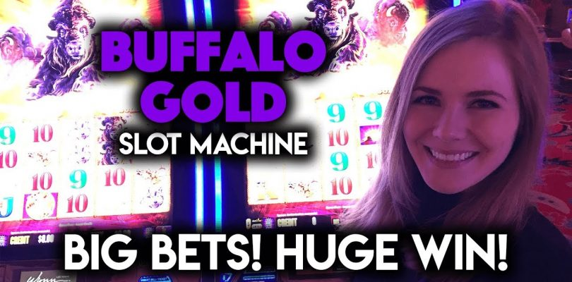 Buffalo Gold Slot Machine! BIG Bets! HUGE WIN!!!