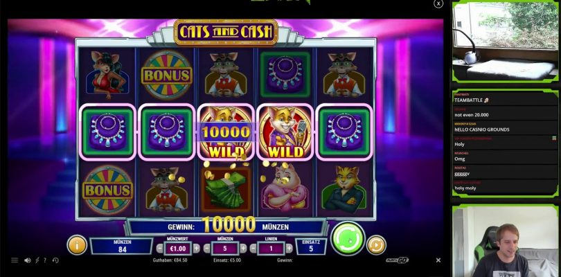 Cats and Cash 1 Line ULTRA BIG WIN Play n Go