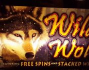 Wild Wolf Slots Multiple Bonuses and Big Win!!