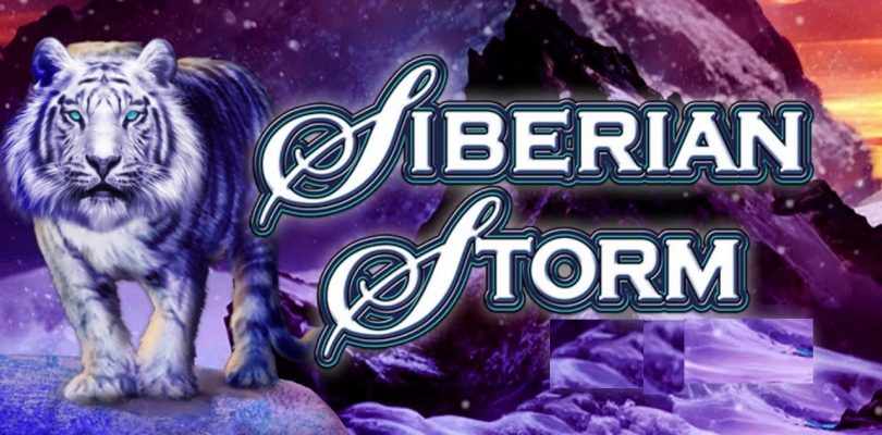 SIBERIAN STORM — Very Big Win Bonus — Dynasty Edition Tiger Lock Respin — IGT Slot Machine Pokies