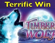 TIMBER WOLF DELUXE — Retrigger Bonus — Very Big Win — Aristocrat Slot Machine Pokie Pokies