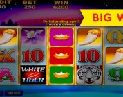 ULTIMATE SETUP! White Tiger Slot — HUGE WIN, AWESOME!