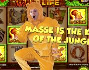 BIG WIN!!!! Wild Life — Casino Games — Bonus Compilation (Casino Slots)