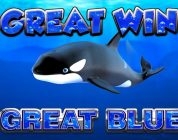 BIG WIN!!!! Great Blue — Casino Games — bonus round (Casino Slots) From Live Stream
