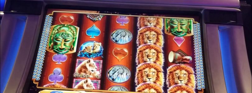 ~GAMBLING WITH A LEGEND~ BONUSES AND BIG WIN MONTAGE — King of Africa Slot machine