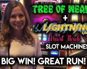 BIG WIN Awesome Run on Tree of Wealth Slot Machine! MAX Bet!!!