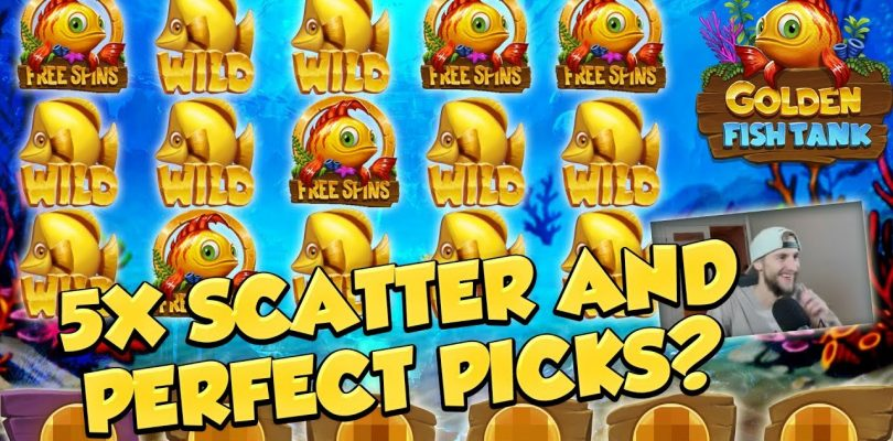 RECORD WIN!!! Golden Fish tank Big win — Casino — free spins (Online Casino)