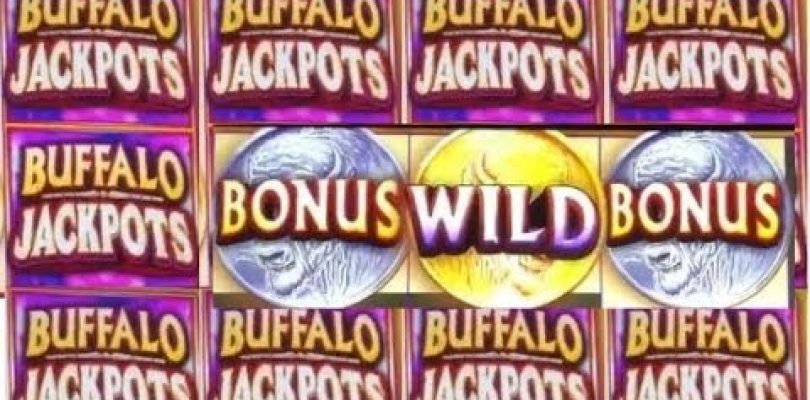 Winning on A Different Kind of BUFFALO Slot Machine! BIG WIN BONUS!
