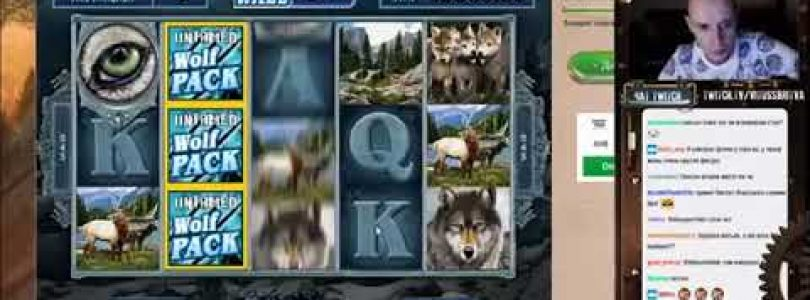 Untamed Wolf Pack slot BIG WIN VitussBritva Twitch