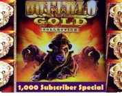 Buffalo Gold Slot Machine — BIG WIN! — 1K Subscriber Special!