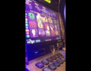 Wild stallion big win 5 skulls pokies at crown casino