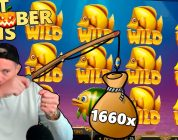 CASINODADDY Top Big Wins Of The MONTH! EPIC FISHING! 1600x+ WIN! #3 (EPIC WINS from OCTOBER 2018)