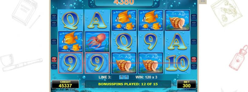 Casino slot   Blue Dolphin WIN 53 eur  scater