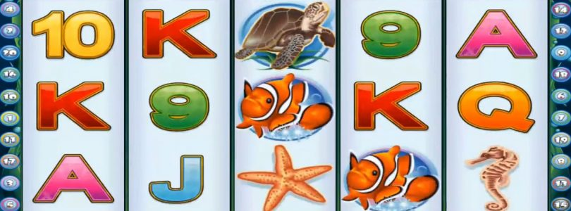 Dolphin Reef Crazy BET RM20 ULTRA MEGA BIG WIN