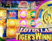Lotus Land Tiger's Winnings BIG WIN BONUSES!!! 1c Konami Slots