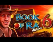 Highroll Book of Ra 6 BIG WIN — 16 euro bet from casino Live Stream