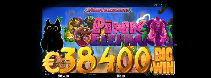 Pink Elephants €38 400 (Thunderkick) BIG WIN (ONLINE CASINO)