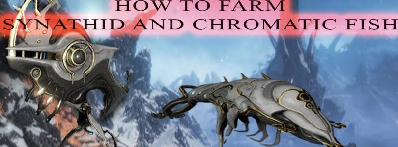 How to farm Synathid Fish and Charamote fish in Caves|Warframe Fortuna
