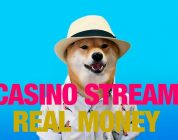 Casino Gambling Stream. ROSHTEIN CASINO