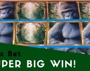 Queen of the Wild — Max Bet — SUPER BIG WIN!(and several other big win bonuses)