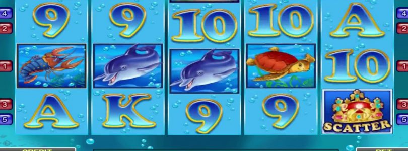 | Blue Dolphin | Amatic Slot Machine — Big Win !