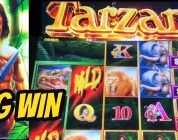 BIG WIN TARZAN & WALKING DEAD BONUS