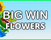 BIG WIN ON FLOWERS — NETENT