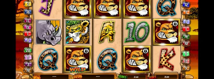 Wild Gambler free spins and BIG WIN