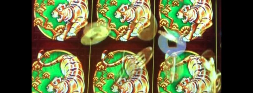 ★TIGER POWER ! BIG WIN☆5 TREASURES Slot machine★Free Play Live play $2.64 & $5.28 Bet kurislot 栗スロ☆彡