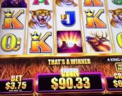 Big win!!!-buffalo grand bonus @ max bet