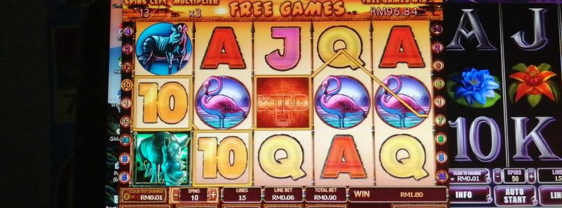 online slot safari bonus big win