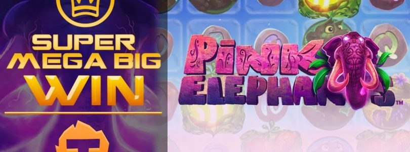 TOP 5 Biggest Win — Pink Elephant slot. BIG WIN #1