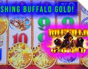 Crushing Buffalo Gold Slot Machine! Wild Battle for the Super Big Win!