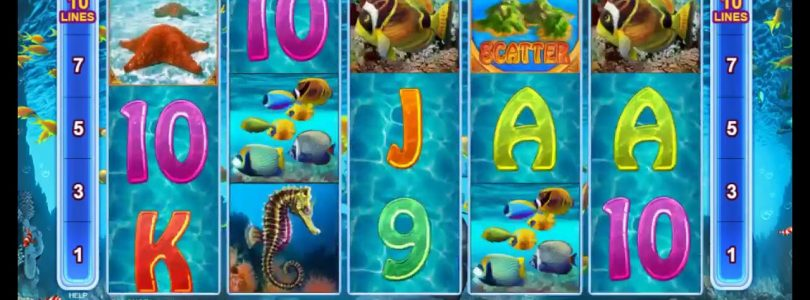 big win real casino slots