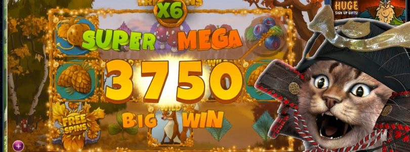 SLOT MACHINE BIG WIN MAX BET 100€ — Seasons (Yggdrasil) — PLAYING ONLINE CASINO GAMES