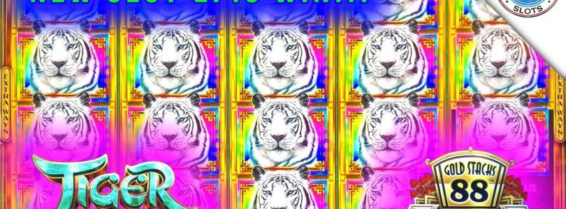 NEW SLOT!!! Tiger Reign Gold Stacks 88 Slot Machine! SUPER BIG WIN!