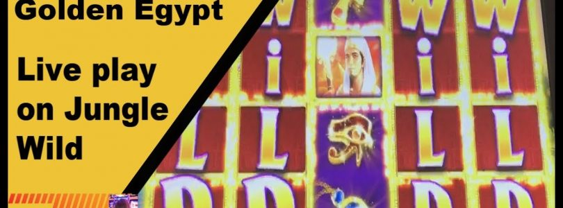 ** Live play and bonus on Jungle Wild ** Big win on Golden Egypt **