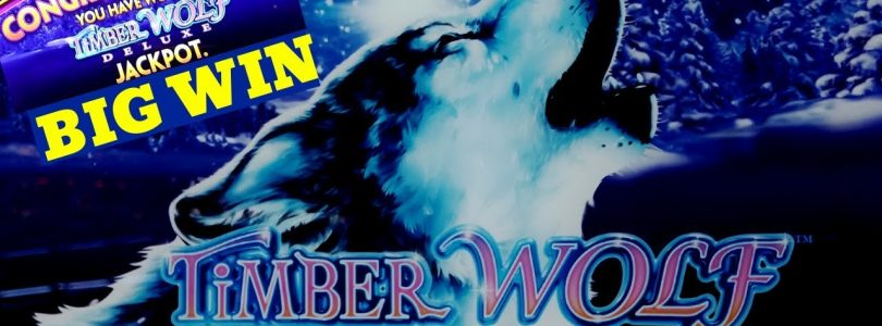 Timber Wolf Deluxe Slot Machine — ★SUPER BIG WIN★ | Timber Wolf Deluxe JACKPOT WON | W4 Jackpot Slot